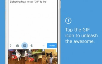 Twitter launches GIF search button