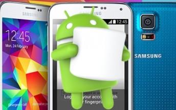 Samsung Galaxy S5 Marshmallow OTA spotted outside South Korea
