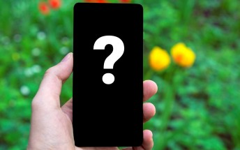 Guess the phone: Which high-end phone did we snap this photo with?