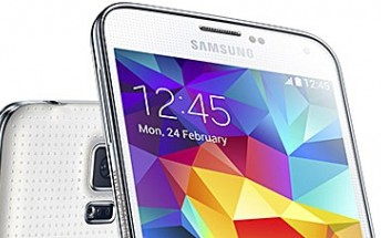 Marshmallow starts hitting Galaxy S5 Plus as well