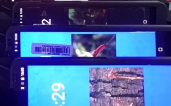 New image reveals Sharp's upcoming phone isn't exactly bezelless