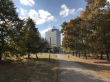 Camera app - Apple iPhone 7 Plus review