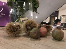 Apple iPhone 7 low-light camera sample - Huawei Mate 9 hands-on