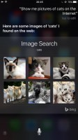 iPhone 7 Plus image search woes - iPhone 7 Plus vs. Pixel XL