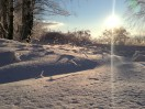 Huawei Mate 8 - Snow Shootout review