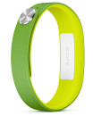 Sony Smartband SWR10