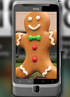HTC Desire Z Gingerbread update coming up this month