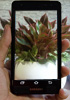 Samsung Galaxy S III sample camera photos arrive