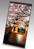 Japan Display unveils 2 QHD smartphone screens