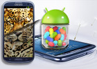 Samsung Galaxy S III Jelly Bean preview: First look