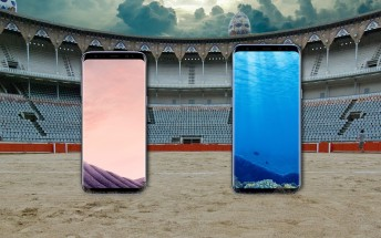 Weekly poll: Do you want the Galaxy S8 or the S8+?