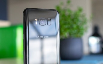 Weekly poll results: Galaxy S8 takes the compact flagship crown