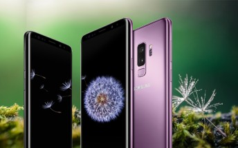 Weekly poll results: Galaxy S9+ beats its smaller sibling 3:1