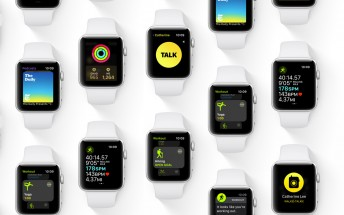 Six Apple Watch Series 4 models were registered with the EEC
