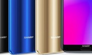 Sharp enters smartphone OLED panels market