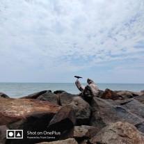OnePlus 7 Pro triple camera: ultra-wide