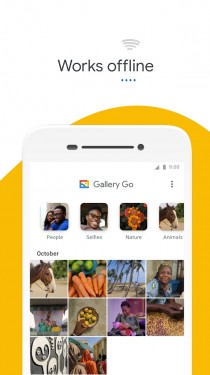 Gallery Go interface