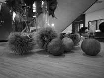 Huawei Mate 9 low-light camera sample: black&white (ISO1000) - Huawei Mate 9 hands-on