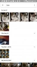 Search - Google Pixel 2 review