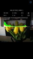 Viewing a single image - Huawei P10 Plus review