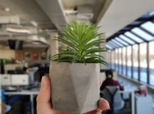 Portrait mode samples on a plant - f/4.0, ISO 87, 1/102s - vivo NEX Dual Display review