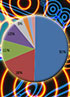Bars and pie charts: a survey into mobile phone usage and owners